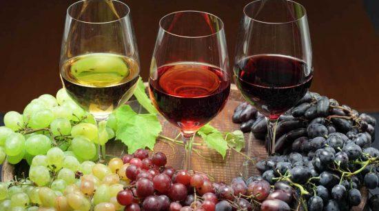 Offerta Vini delle Langhe 6 bottiglie